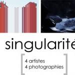 Singularités, 4 artistes - 4 propositions